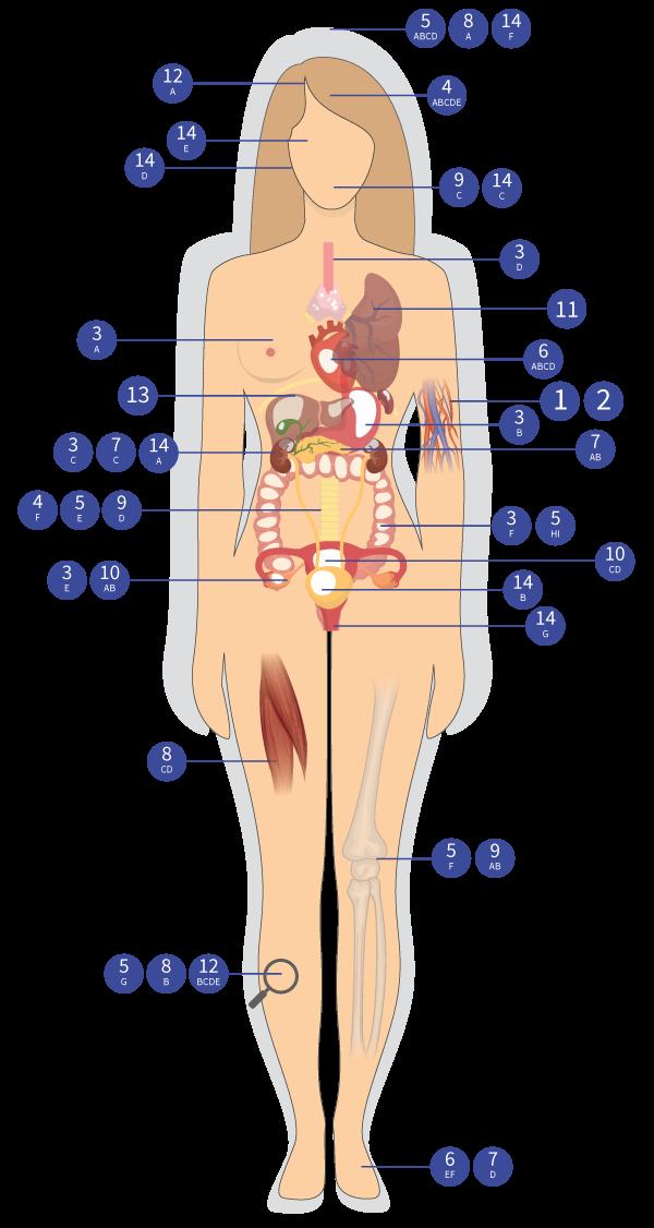 Klinické štúdie kmeňových buniek vo svete
